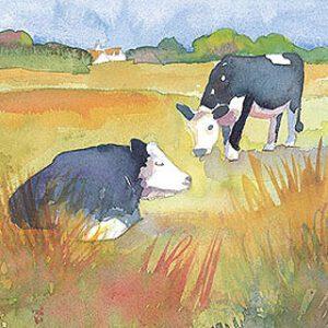 Cows Greetings Card-0