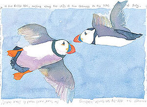 Flying Puffins x 6 single notelets-0