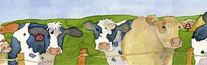 Cows Long Print-0