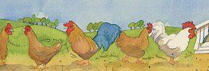 Chickens Long Print-0
