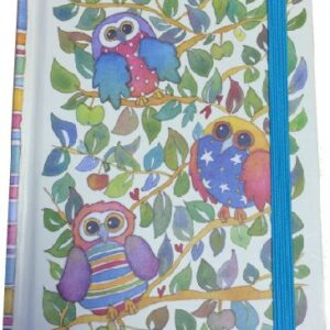A5 Hard Back notebook - Quirky Owls-0