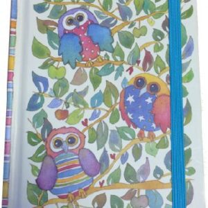 A6 Hard Back notebook - Quirky Owls-0