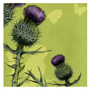 Thistle Greetings Card-0