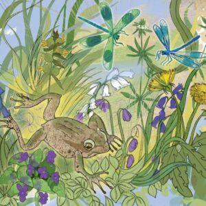Froggie - Greetings Card-0