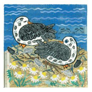 Fulmars Greetings Card-0