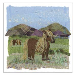 Shetland Pony Greetings Card-0